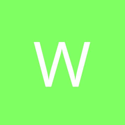 wodek